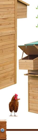 xxl h hnerstall hasenstall kleintierstall nagerstall h hner 295x165x190cm ebay. Black Bedroom Furniture Sets. Home Design Ideas